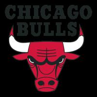 Chicago Bulls logo vector