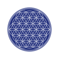 The flower of life vector logo